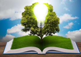 Graphic showing an open book, on top of which there is grass and a tree. In front of this, stands a light bulb. Blue skies can be seen behind.