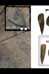 Two photos and a 3D model of sharp-edged ancient artifacts.