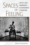 The cover of Marta Figlerowicz's new book: Spaces of Feeling