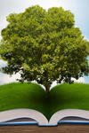 Image of a tree emerging from an open book